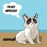 im-not-impressed